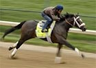 KD 2013: Gary Stevens - Oxbow Workout, 4/29/2013
