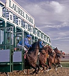 11-Day Summer Meet at Laurel Park Approved