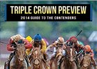 2014 Triple Crown Preview
