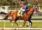 California Chrome Tabbed in Derby Future Pool