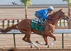 California Chrome Cruises at Los Alamitos