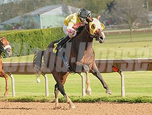 Good Luck Gus comes home strong to win the New York Breeders' Futurity at Finger Lakes.