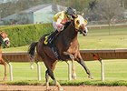 Good Luck Gus Takes NY Breeders' Futurity