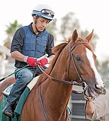 California Chrome Progressing Toward PA Derby