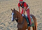 California Chrome Stretches Legs at Belmont