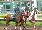 California Chrome Sneaks in Los Alamitos Work