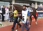 Dubai World Cup: Godolphin Mile