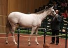 Keeneland September Sale Day 2 Recap, 2012