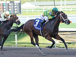 Onlyforyou Remains Unbeaten in Davona Dale