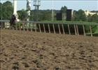 Belmont Stakes: Social Inclusion May 31, 2014