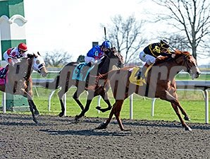 Judy the Beauty won the Madison Stakes at seven furlongs on April 12.