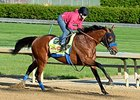 Rebel Winner Hoppertunity Works at Churchill