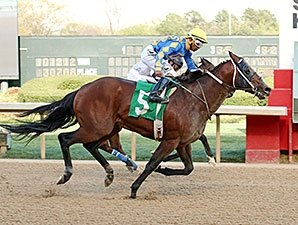 Lemon Drop Dream Bursts to Count Fleet Upset
