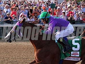 2014 Kentucky Derby winner California Chrome is among the nominated horses to the Los Alamitos Derby.