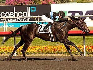 Shared Belief Confirmed Off KY Derby Trail