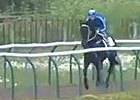 Royal Ascot - Peter Moody (Black Caviar)
