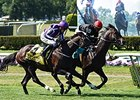 Adelaide, Tourist to Clash in Secretariat