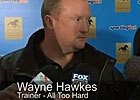 Cox Plate: Wayne Hawkes - Trainer for All Too Hard