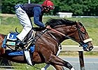 Wicked Strong works at Belmont Park June 1, 2014