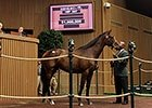 Keeneland Sept Yearling Sale: Hip 307 in the Ring