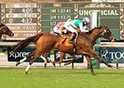 Emollient Edges Parranda in Rodeo Drive