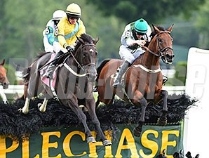 Makari (right) wins the 2014 A. P. Smithwick Memorial Steeplechase Stakes.