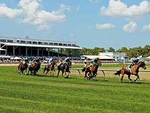 'Summer Festival' Set for Tampa Bay Downs