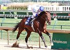 Almost Famous Breezes for Ky. Jockey Club