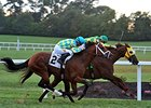 Suntracer Has His Day in Turf Cup Thriller