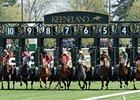 Keeneland Fall Meet Begins With Momentum