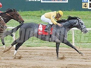 Z Rockstar won the 2014 Cherokee Nation Classic Cup Stakes.