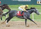 Z Rockstar Favored in Oklahoma Classics Cup