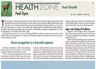 Health Zone: Foal Health: Foal Eyes