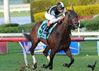 Amira's Prince Streak on Line in GP Turf 'Cap