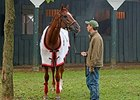 Through the Lens: Wise Dan's Comeback
