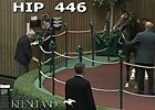 Keeneland September: Hip 446 in the Sale Ring