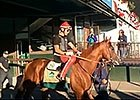 California Chrome Goes to the Track