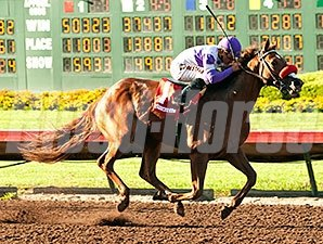 Wake Up Nick wins the Barretts Juvenile.