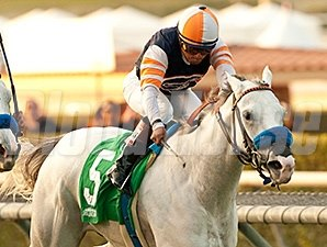 Egg Drop makes her first start of 2014 in the Buena Vista Stakes.