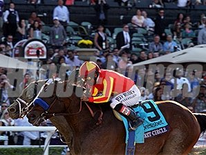 Secret Circle won the 2013 Breeders Cup Xpressbet Sprint.