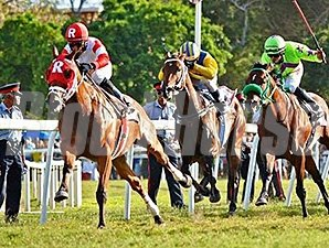 Major Marvel wins the Sandy Lane Barbados Gold Cup.