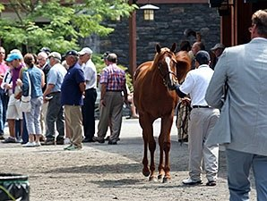 F-T Saratoga Sale Rich in Well-Bred Fillies