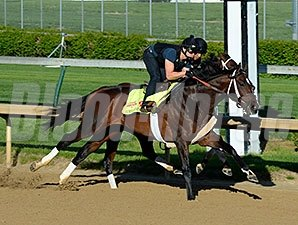 Commanding Curve breezed five furlongs at Churchill Downs on April 26, 2014.
