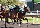 Avanzare Prevails in Washington Park Thriller
