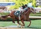 Danza to Stand at Spendthrift Farm in 2016