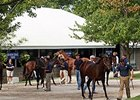 Hips to Watch: Keeneland September Day 3