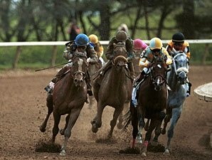 Wagering Fell 7.3%, Purses Down 6.1% in 2010