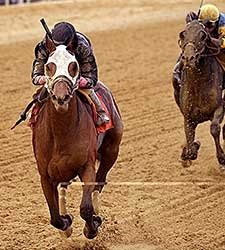 Kid Cruz Wins Tesio, Enters Preakness Picture