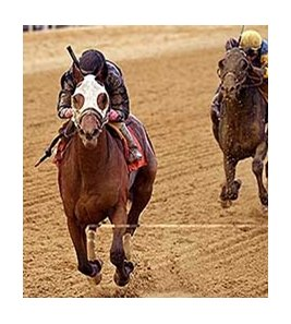 Kid Cruz Wins Tesio Enters Preakness Picture Bloodhorse