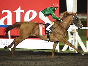Prince Bishop Makes Strong Meydan Statement